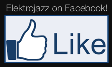 Elektrojazz on Facebook logo